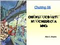 Quĩ đầu tư - Chương 06: Chiến lược đầu tư nước ngoài của MNCS