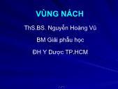 Y khoa y dược - Vùng Nách