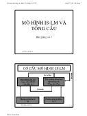Bài giảng Kinh tế vĩ mô - Bài 7: Mô hình IS-LM và Tổng cầu