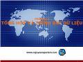 Bài giảng Nguyên lý thống kê - Chương 2: Tổng hợp và trình bày dữ liệu - Nguyễn Ngọc Lâm
