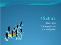 Bài giảng Quản trị học - Tổ chức - Trần Nhật Minh