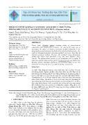 Khảo sát hàm lượng Flavonoid, Alkaloid và khả năng kháng khuẩn của cao chiết cỏ mần trầu (Eleusine indica) - Nguyễn Thanh Nhật Phương